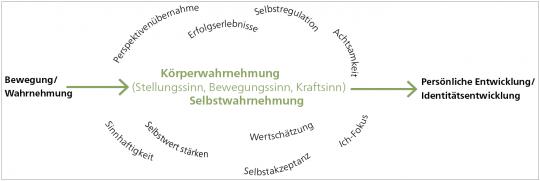 Vielseitige Bewegungs- und Wahrnehmungserfahrungen als Grundlage für eine Persönliche Entwicklung.