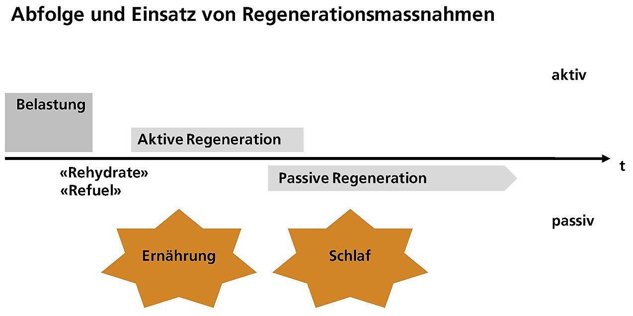 Grafik Einsatz und Abfolge Regenerationsmassnahmen.