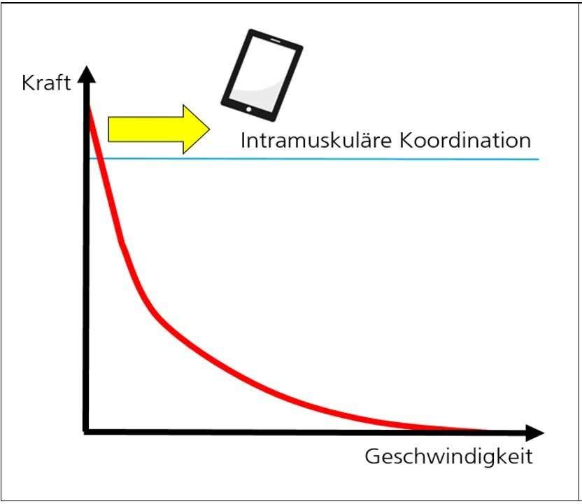Grafik: Intramuskuläre Koordination - im Verhältgnis zur Geschwindigkeit.
