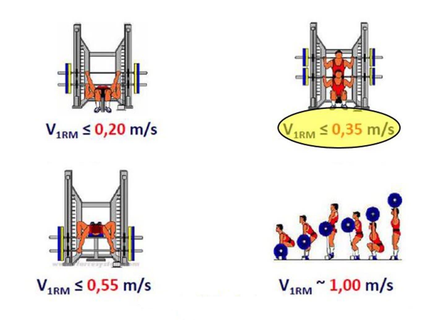 Grafik: Mean velocity (MV