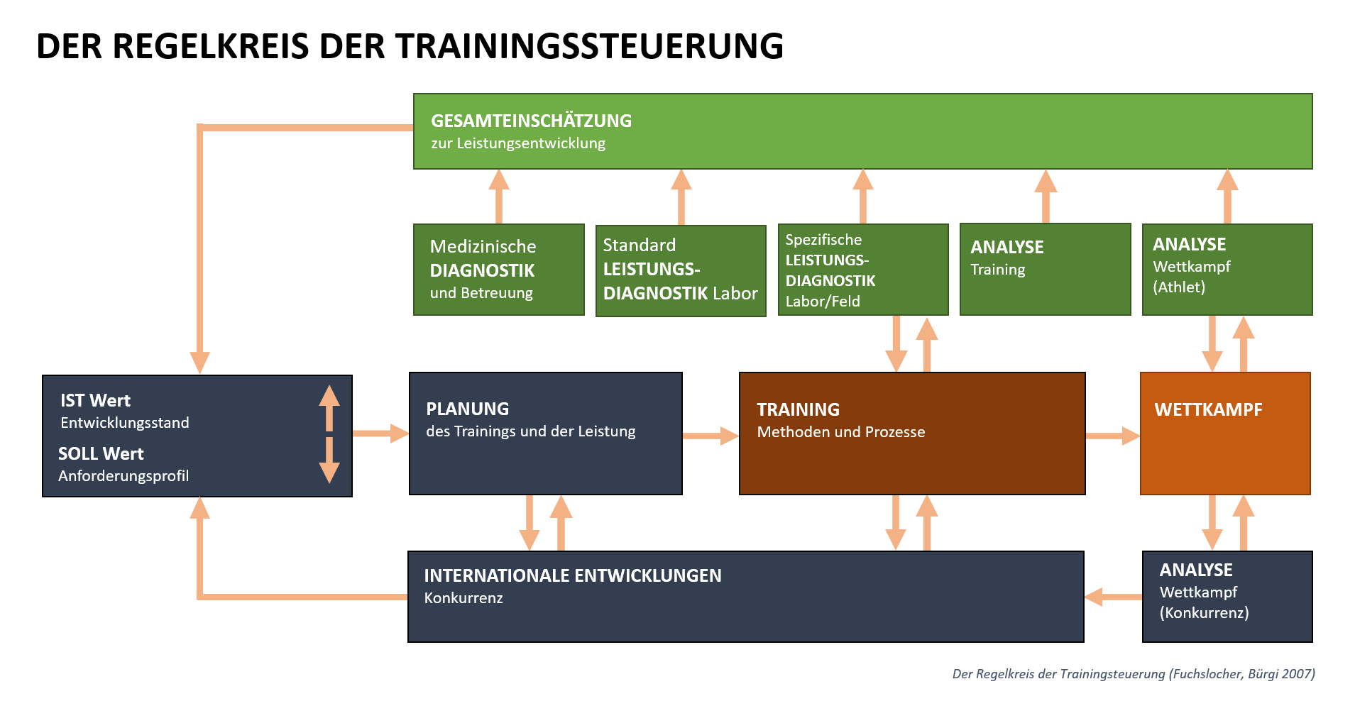 Grafik: Das Prozessmodell im Detail.
