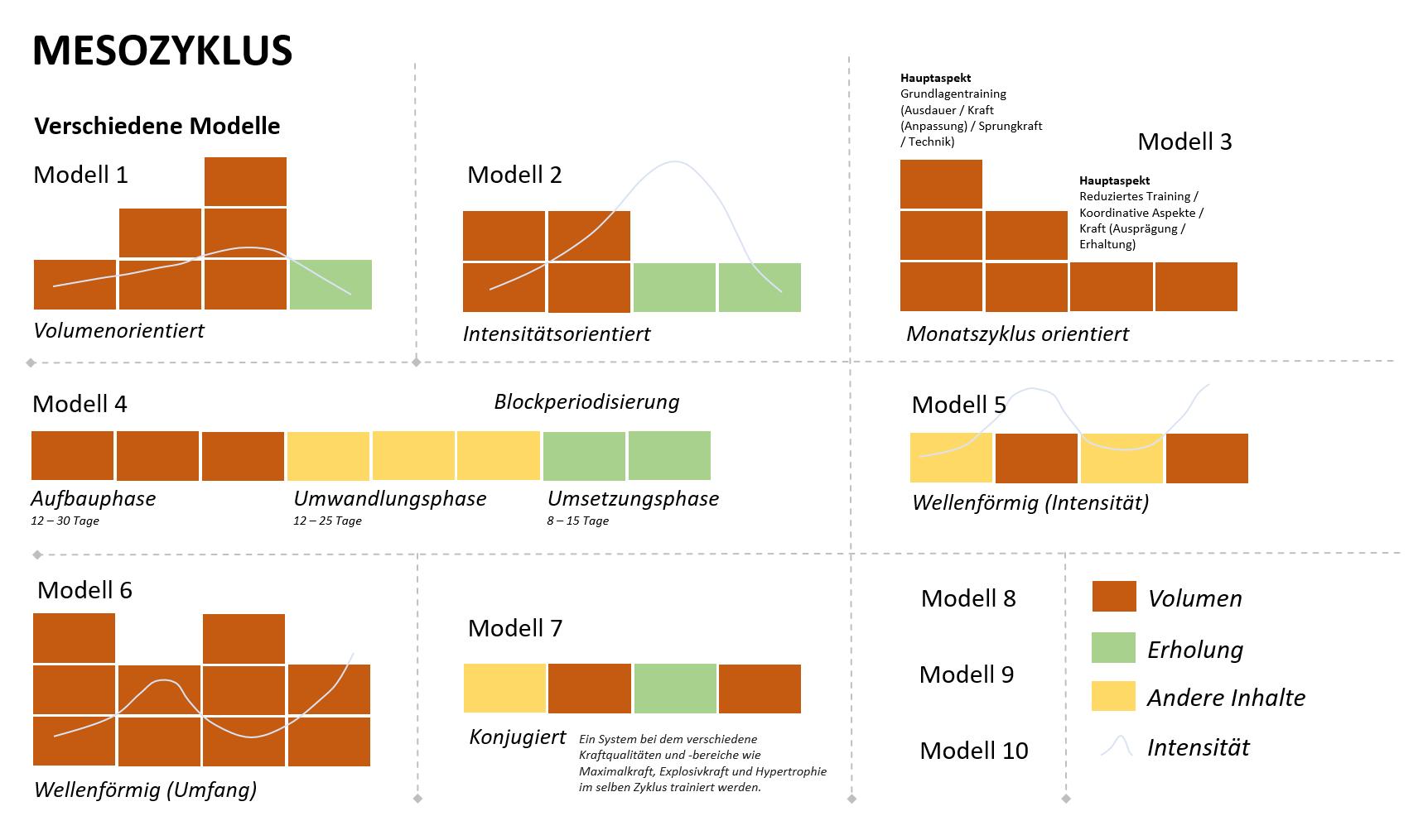Grafik: Sieben Modelle des Mesozyklus'.