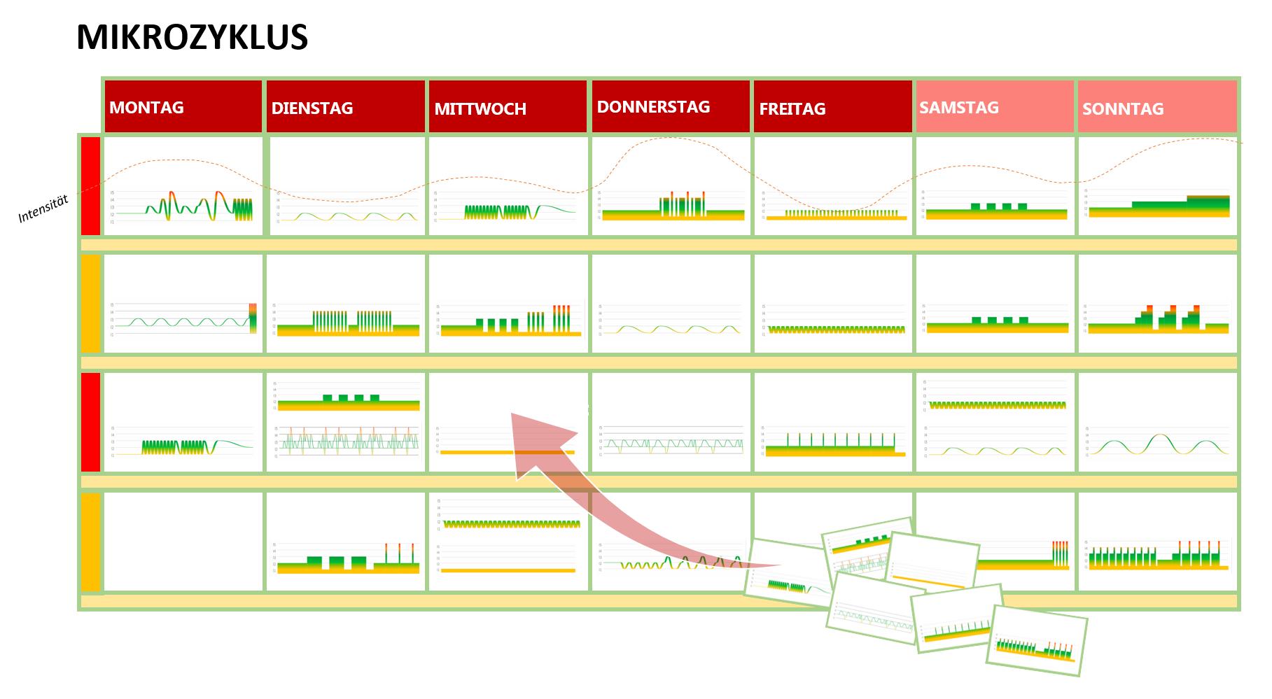 Grafik: Beispiel eines Mikrozyklus'.