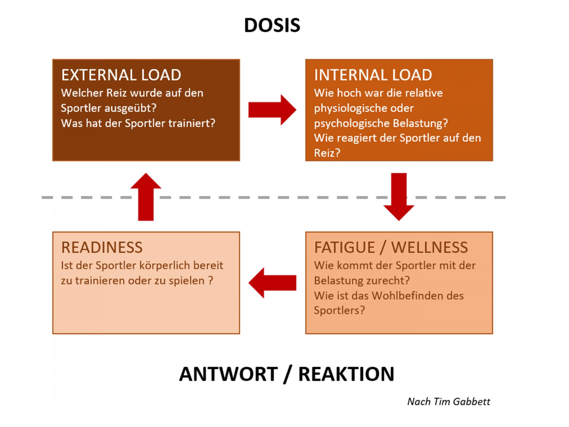 Grafik: Eine weitere Trainingsanalyse als Grundlage zur Planung.
