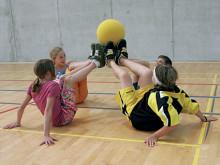 Piccoli giochi con la palla: Lavoro di gruppo
