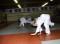 J+S-Kids – Judo: Lektion 2 «Einführung: Zu Besuch im Urwald»