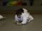 J+S-Kids – Judo: Lektion 1 «Einführung: Verhext»
