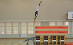 À l'article: Mini-trampoline: Saut d'altitude