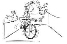 Velofahren: Hühnergatter