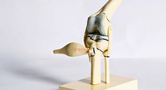 Entraînement: Eviter les blessures du ligament croisé