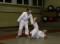 J+S-Kids – Judo: Lektion 5 «Falltechniken und Bodenelemente 2»