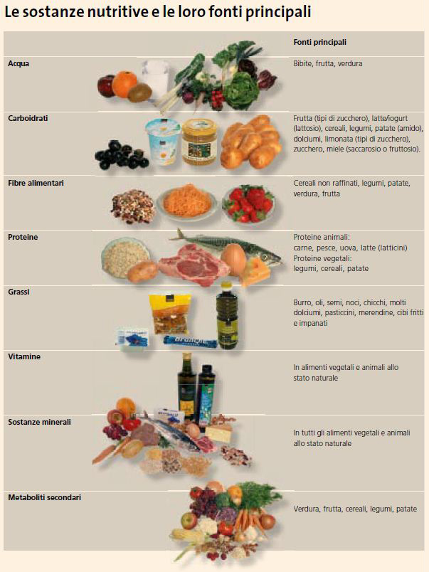 Alimentazione I Componenti Alimentari 187 Mobilesport Ch