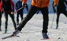 Lesioni sportive: Rottura del menisco