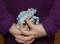 Alltagsgegenstände – Zeitung: Jonglierkünstler