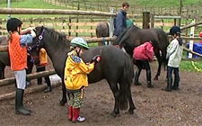 G+S-Kids – Sport equestri: Lezione 1 «Abituarsi al cavallo»