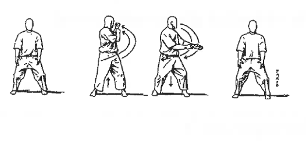 tai chi instructions pdf