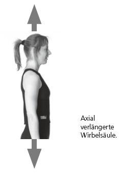 Die axial verlängerte Wirbelsäule.