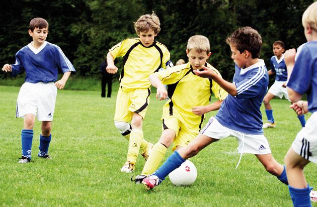 In einem Turnier oder im Meisterschaftsbetrieb gilt es, einige Rollen ...