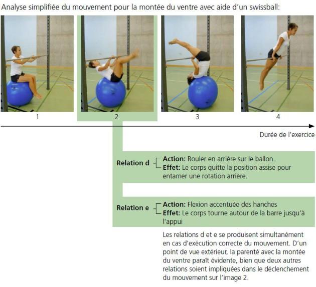 Analyse simplifiée du mouvement pour la montée du ventre avec aide d'un swissball
