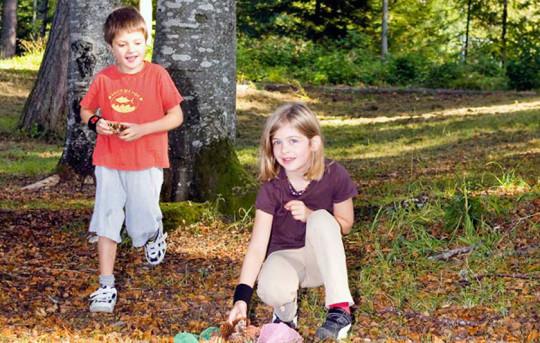 Zwei Kinder beim Spielen vor einem Baum im Wald