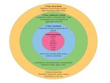 Grafico: le quattro fasi del processo coreografico