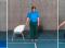 Sensomotorisches Training – Drehbewegungssinn: Sag ja