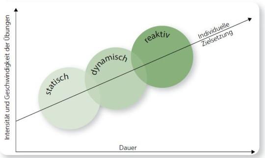Grafik: Verknüpfung deer Strukturen bei einem Sensomotorischen Training.