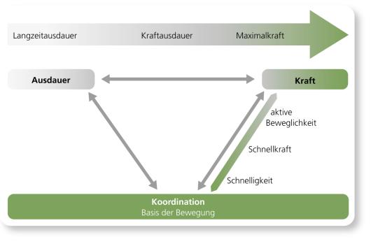 Grafik: Koordination als Basis aller sensomotorischen Leistungen.
