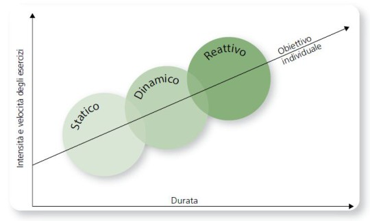 Grafico: evoluzione dell'allenamento sensomotorio