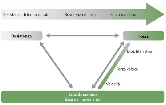 Tabella: il movimento è una prestazione di coordinazione del sistema sensomotorio.