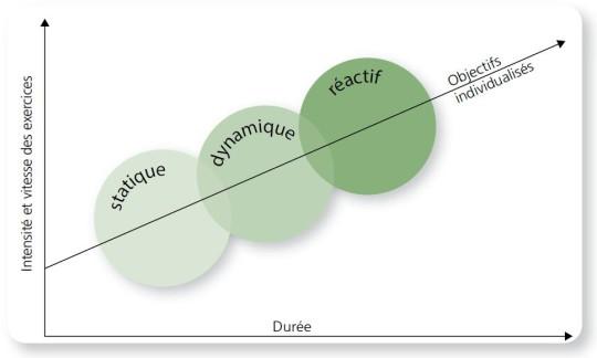 Figure: Evolution de l'entraînement sensori-moteur