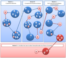 Grafische Darstellung des Aufbaus der transversalen Unterrichtsreihe zum Thema Symmetrie