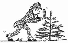 Dessin: Sherlock Homes examine un petit sapin avec sa loupe.