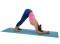 Yoga – En équilibre sur les mains (B1): Dauphin