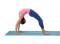 Yoga – En équilibre sur les mains (B1): Roue