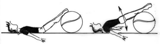 Dessin: description d'un exercice de force avec un ballon de gymnastique.