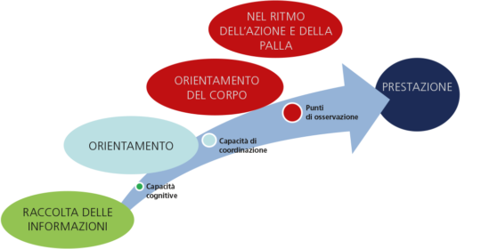 Grafico: il modello di osservazione