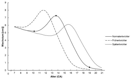 Grafik: Wachstumskurven Vergleich Früh-/Spätentwickler